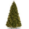 7.5' Green Scandinavian Fir Artificial Christmas Tree with 750 Clear Lights and Stand