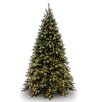 Tiffany Fir 9' Green Artificial Christmas Tree with 850 Clear Lights and Stand