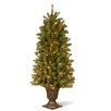Douglas 5' Green Fir Artificial Christmas Tree with 200 Clear Lights and Stand