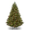 Douglas 9' Green Fir Artificial Christmas Tree with 700 Multi Lights and Stand