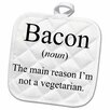 Bacon Noun The Reason I'm Not a Vegetarian Pot Holder
