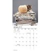 2015 Kittens Mini Calendar