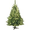 Christmas Trees Seasonal Decor