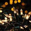 100 Fairy String Light
