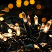 100 Fairy String Light Bulb Color Warm White