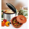 2-in-1 Rice N Slow Cooker