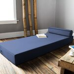 Ansley Daybed with Bolster Pillow Color: Blue