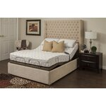 """Blossom 9"""" Bamboo Charcoal Memory Foam Mattress and Adjustable Base Size: Queen"""