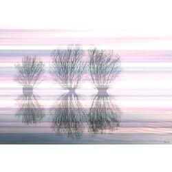 3 Trees Painting Print on Canvas
