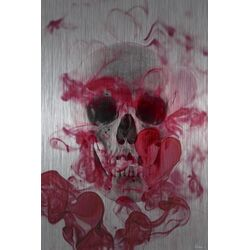 Skull 2 Graphic Art Plaque