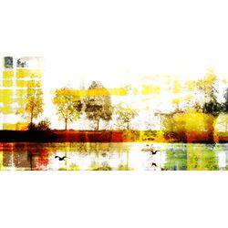 Biscarrosse Lake by Parvez Taj Graphic Art on Canvas
