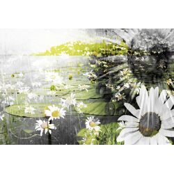 Lillies Graphic Art on Canvas