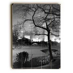 Winter at Night New York Central Park Wall Art