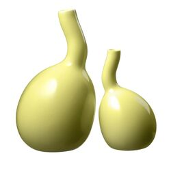 Bulbino 2 Piece Vase Set