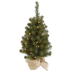 Felton 2.5' Green Pine Artificial Christmas Tree with 50 Clear Lights