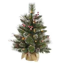 Snow Tip Pine / Berry 2' Pine Artificial Christmas Tree with 20 Clear Lights