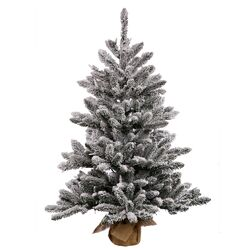 Flocked Anoka 2.5' Grey Artificial Christmas Tree with 50 Clear Lights