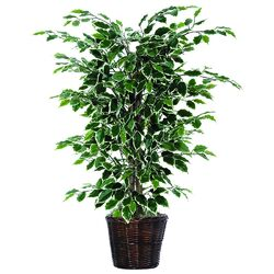 Bushes Artificial Potted Natural Variegated Ficus Tree in Basket