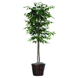 Designer Artificial Potted Natural Ficus Tree in Basket