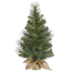 Mixed Pine Burlap Table Top Tree