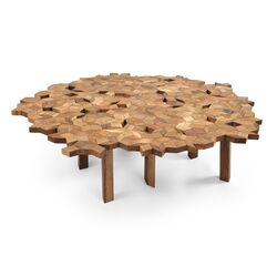 Umbra Coffee Table