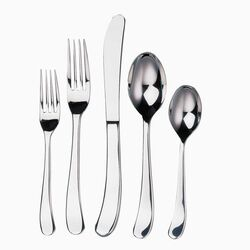 Oneida Amsterdam 45 Piece Premium Tier Flatware Set | Wayfair