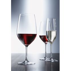 Forte Tritan Drinkware Collection-Forte Tritan Universal Glass