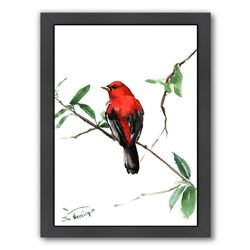 Summer Tanager 5 Framed Painting Print