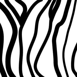 Pattern - Zebra Stripes Stretched Wall Art