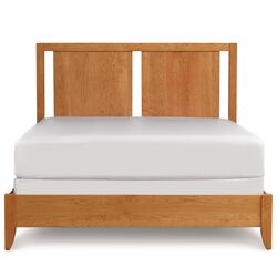 Dominion Storage Bed with Two Panel Headboard
