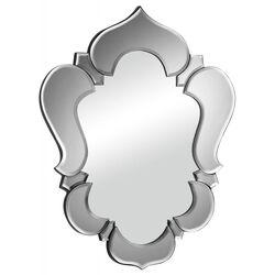 Vishnu Mirror