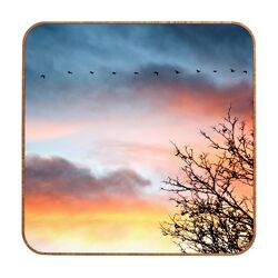 Bird Line by Bird Wanna Whistle Framed Photographic Print Plaque