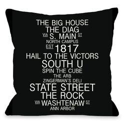 Ann Arbor Michigan Landmarks Pillow