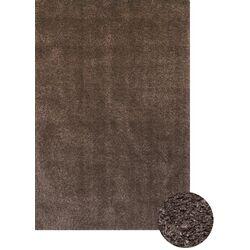 Comfort Shag Chocolate Area Rug