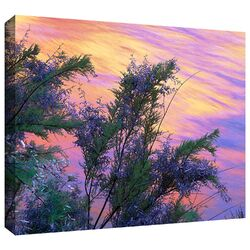 'Sandstone Reflections' by Dean Uhlinger Gallery-Wrapped Canvas Art