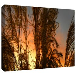 'Summer Grass' by Dean Uhlinger Gallery-Wrapped Canvas Art