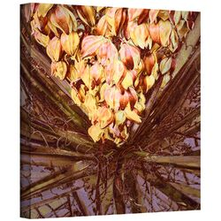 'Yucca Impression' by Dean Uhlinger Gallery-Wrapped Canvas Art