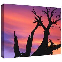 'Desert Magic Hour' by Dean Uhlinger Gallery-Wrapped Canvas Art