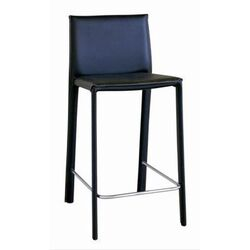 Goneril Low-back Leather Counter Stool (Set of 2)