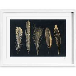 Corinthian Feathers Framed Painting Print