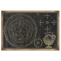 The Art Cabinet 'Floreali Astronomic Plate' Framed Graphic Art