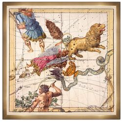 The Art Cabinet 'Leo and Centaurus' Framed Graphic Art