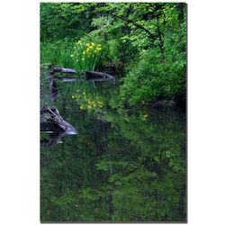 Wild Iris Reflections by Kurt Shaffer, Canvas Art - 24