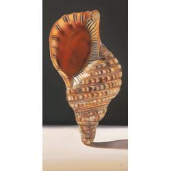 Standing Shell by Nancy Egan Painting Print on Canvas