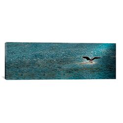 Panoramic Bird Taking Off Over Water Photographic Print on Canvas