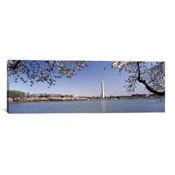 Panoramic Cherry Blossom with Monument in the Background, Washington Monument, Tidal Basin, ...