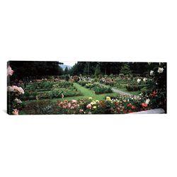 Panoramic International Rose Test Garden, Washington Park, Portland Photographic Print on Canvas