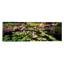 Panoramic Japanese Garden, University of California, Los Angeles, California Photographic Print ...