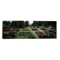 Panoramic 'International Rose Test Garden, Washington Park, Portland, Oregon' Photographic ...