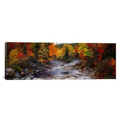 Panoramic Panoramic Stream with Trees in a Forest in Autumn, Nova Scotia, Canada Photographic ...
